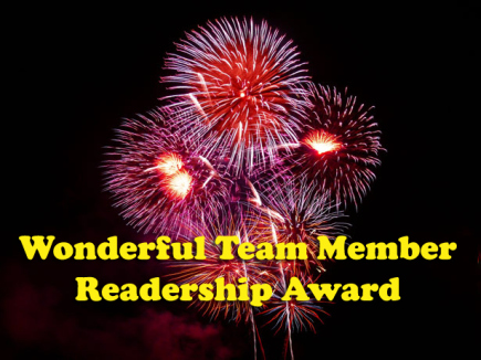 wonderful-team-award