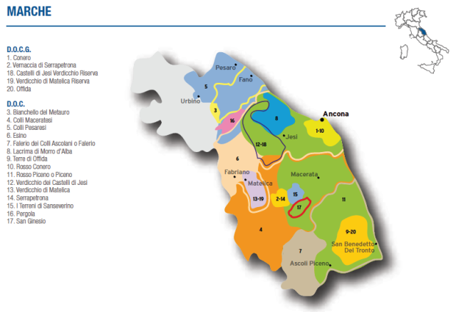 Wine Map of Marche – Courtesy of Federdoc (click on map to go to website)